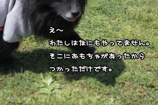 Img_97671