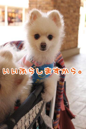 Img_38701